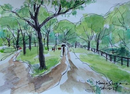 横浜市・舞岡公園のおんどまり保護区
