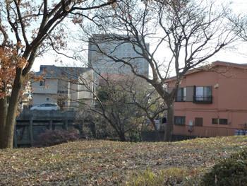 藤沢市・日大西ノ谷ガーデンの木々と民家