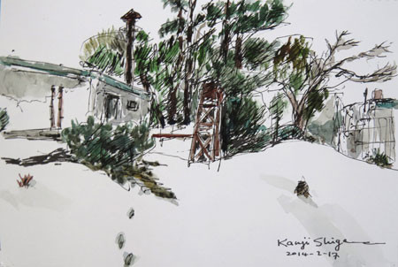 藤沢・雪のグリーンハウスの裏庭