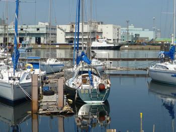 横浜・貯木場のプレジャーボート