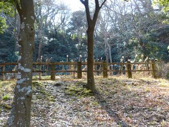 藤沢・新林公園の鳥獣保護区