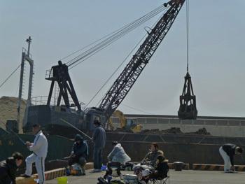 神奈川県・大磯港での釣り