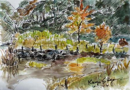 大和市・泉の森しらかしの広場の紅葉