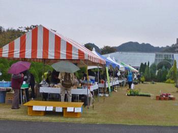 鎌倉・花のトンネル広場のイベント