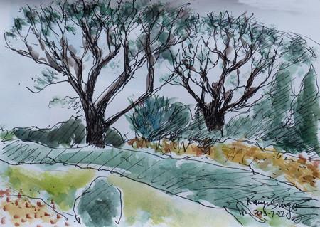 横浜・港の見える丘公園のの木々