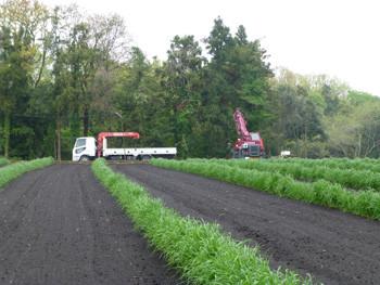 藤沢市・石川の畑とトラックとクレーン車