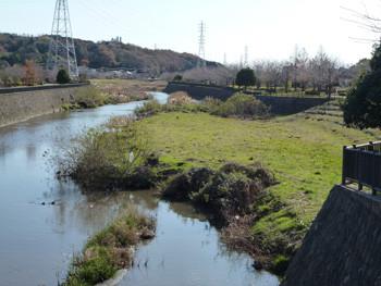 藤沢市・大庭鷹匠橋付近の引地川