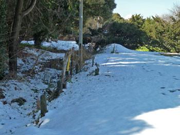 藤沢市・県立体育センターの雪景色