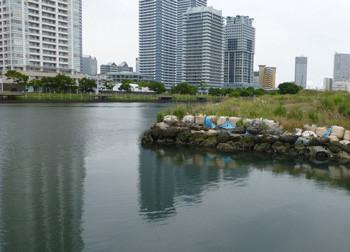 横浜・高島水際線公園から見る高層ビル