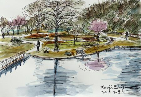藤沢・新林公園の池