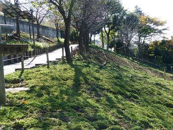 大和市・ふれあいの森の坂道