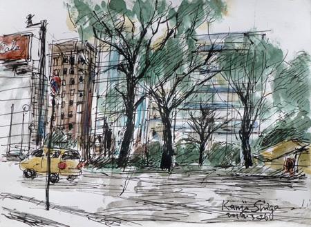 横浜市・桜木町の弁天橋界隈の木々