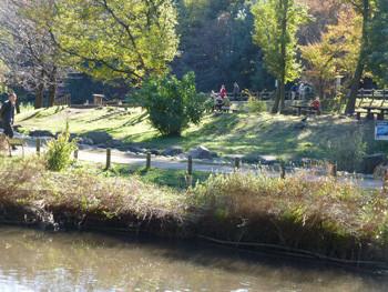 大和市・泉の森のしらかしの広場の休憩場