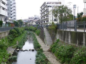 横浜・大岡川の周辺のマンション