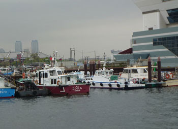 横浜・大桟橋埠頭ビル脇の船溜まり