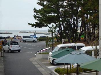 藤沢市・片瀬漁港と松林