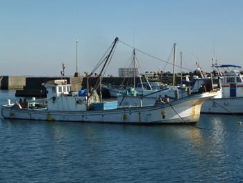 神奈川県・大磯漁港の漁船(その2)