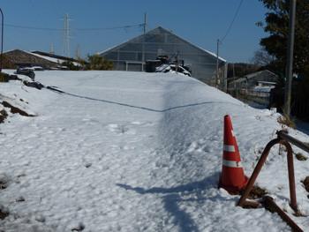 藤沢・立石のビニールハウス