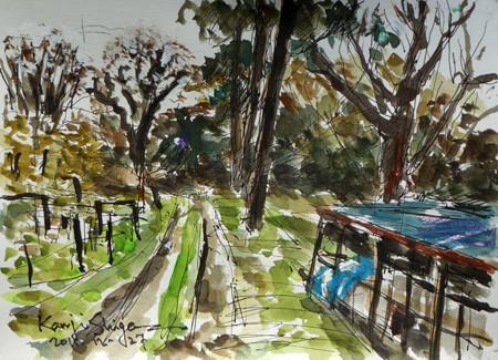 藤沢市・石川の田園風景