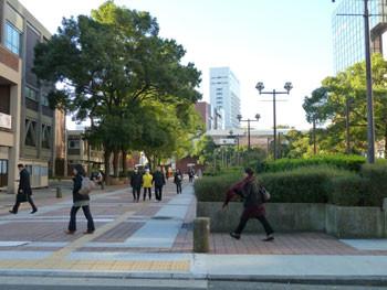 横浜・横浜市役所の「くすのき公園」