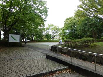 横浜・鳥浜の金沢緑地