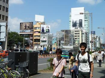 東京都・青山通りから見た表参道