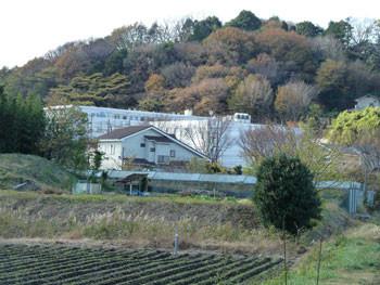 藤沢・大庭のモダンな新築住宅とマンション