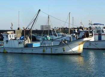 神奈川県・大磯漁港の漁船