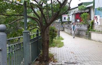 横浜上大岡・大岡川の居酒屋「萬屋」