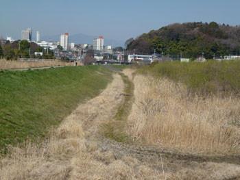藤沢市・引地川親水公園とライフタウン