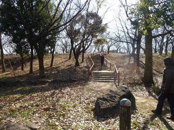 横浜市戸塚区・舞岡公園のおおなばの丘