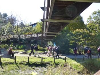 大和市・泉の森の緑のかけ橋
