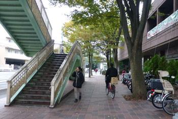 鎌倉市・大船フラワーセンターの入園口