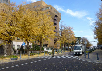 横浜・日本大通りの横浜地方検察庁