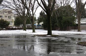 藤沢・雪の県立体育センターの駐車場
