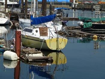 横浜・本牧ふ頭の貯木場のプレジャーボート