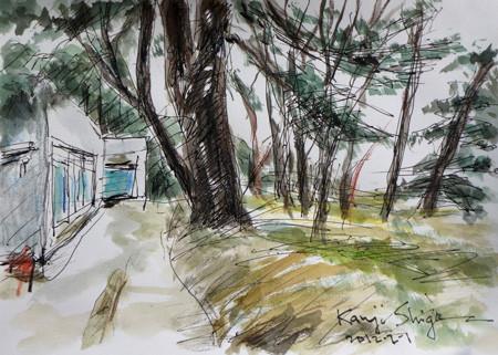 藤沢市・体育センター内のグリーンハウスと木立