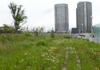 横浜・新高島駅付近の空き地とビル