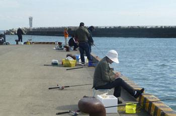 神奈川県・大磯港での釣り人