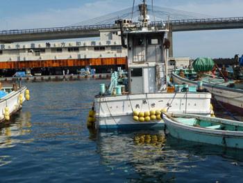 小田原市・小田原漁港の漁船
