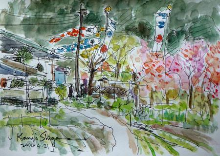 藤沢市・大庭の鯉のぼりとハナモモ