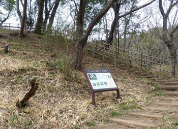 横浜・四季の森公園の坂道