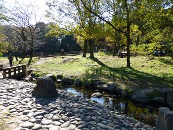 大和市・しらかしの広場の小川