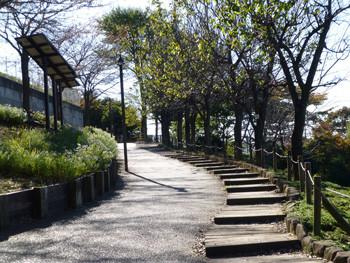 大和市・ふれあいの森の入り口付近