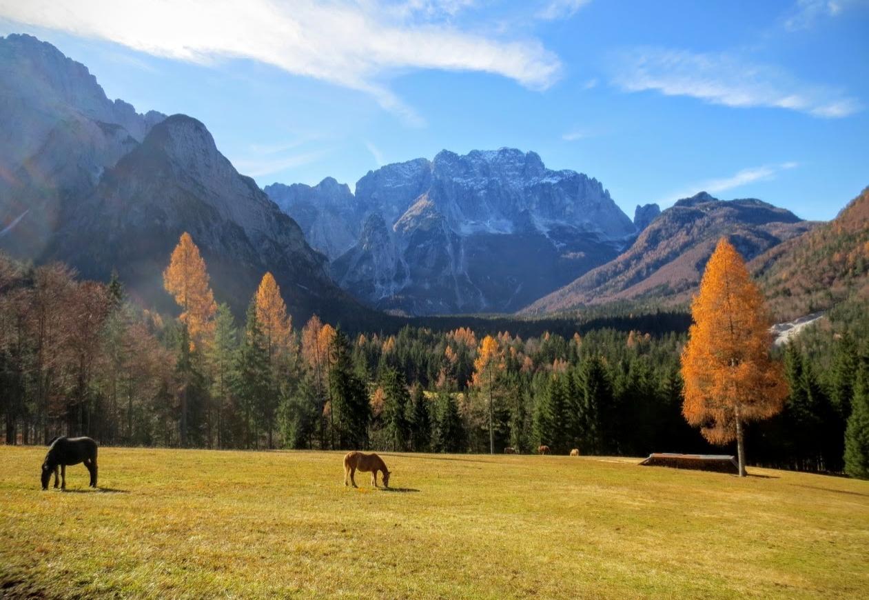 Die Pferde grasen in der spätherbstlichen Sonne vor der herrlichen Kulisse des Montasch