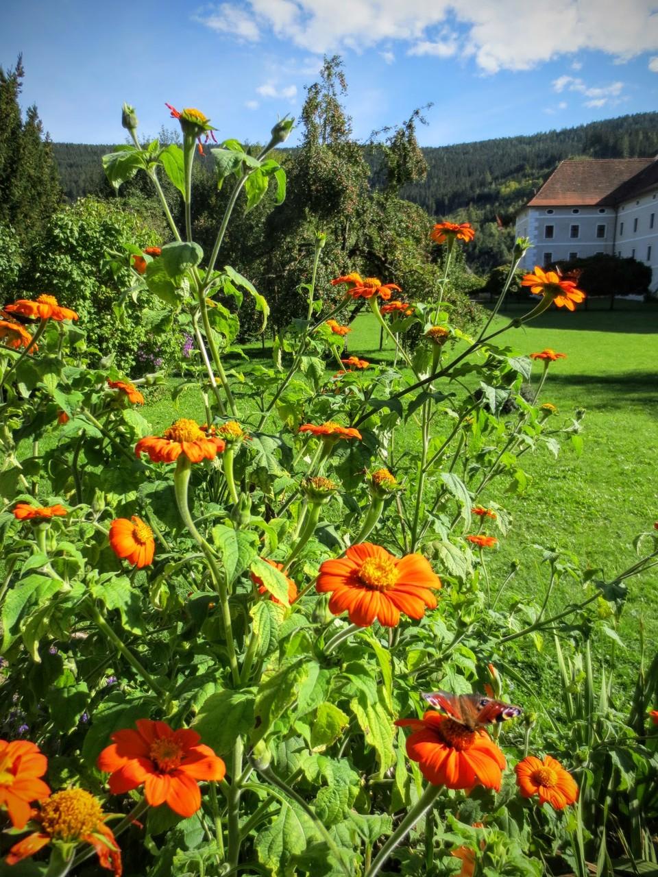Klostergarten des Gurker Domes