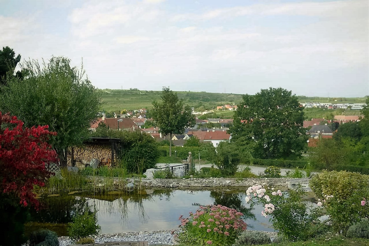 素晴らしい屋上庭園。背後の丘はケーファーベアク~シェケンビヒル