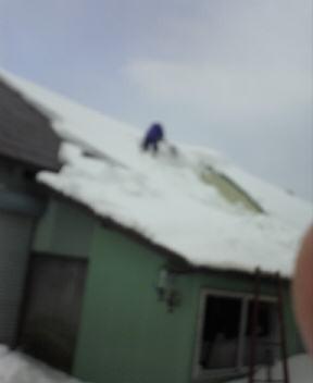 屋根ゆきおろし!