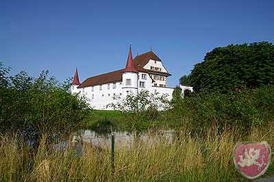 Schloss Wyher Ettiswil Hochzeit Heiraten tanzen DJ Dubi