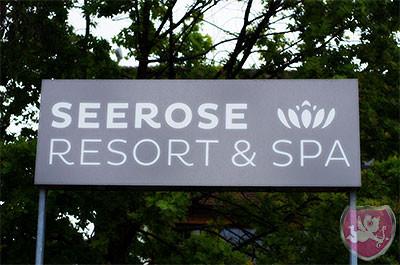 Seerose Resort & Spa Meisterschwanden Hochzeit Heiraten DJ Dubi